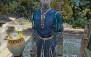 """Andel Indarys in """"TES IV: Oblivion"""""""